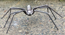 Spring spider