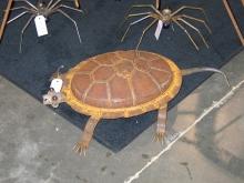 Rusty the Turtle